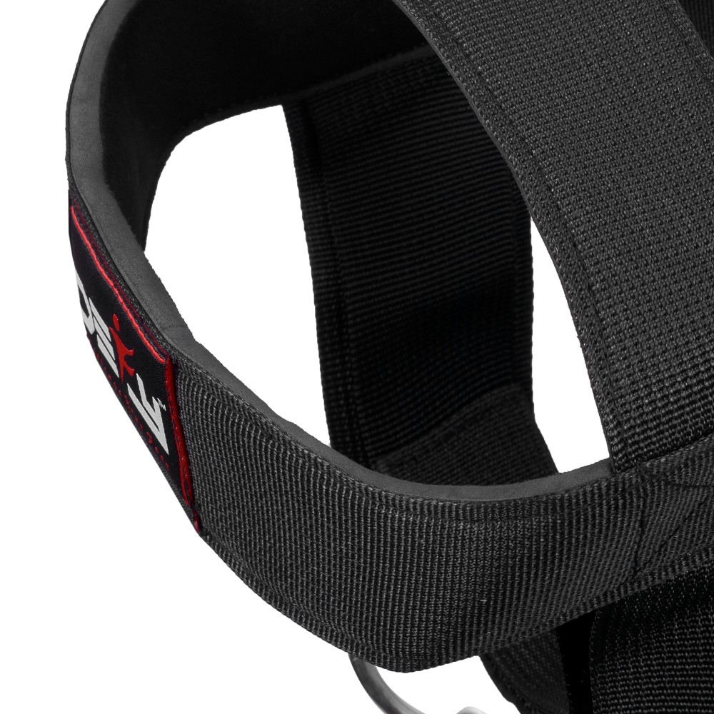 DEFY Head Harness Strength Head Strap Gym Fitness Exercise Neoprene Padded Black